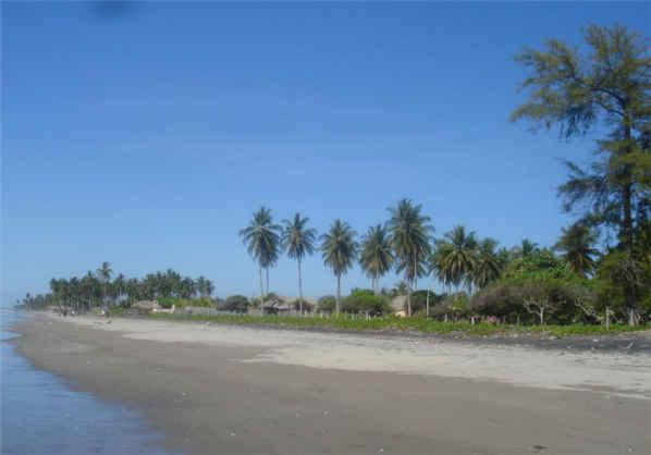 imagen de playa el espino