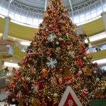 Thumbnail El árbol de Navidad más grande en El Salvador