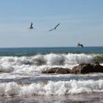 Thumbnail Para turistas: Las playas que deberían visitar en estas vacaciones