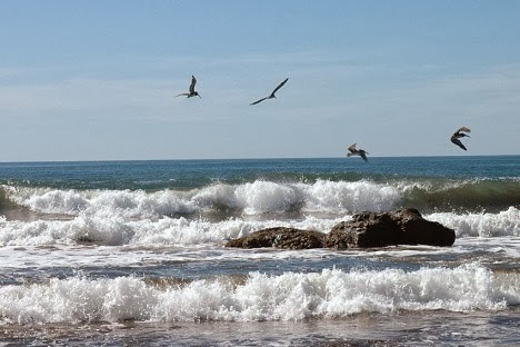 Las playas que deberían visitar en estas vacaciones el salvador