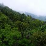 Thumbnail Áreas protegidas de El Salvador