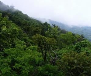 Áreas protegidas de El Salvador