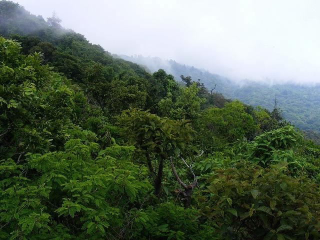 cerro verde imagen