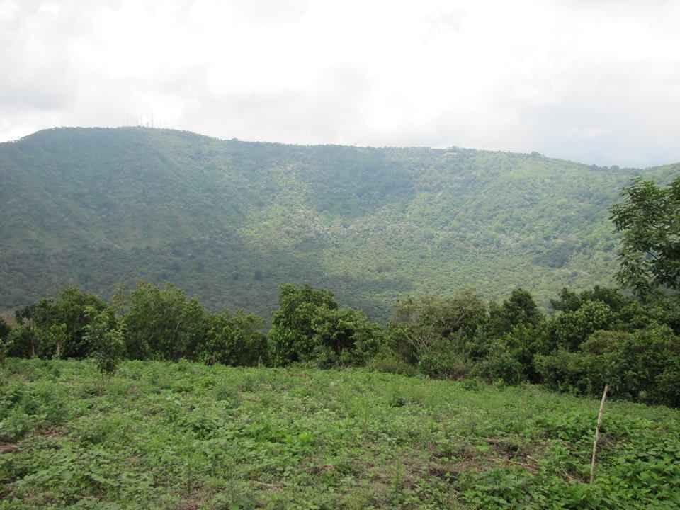 Hermoso paisaje con un contacto con la naturaleza directo