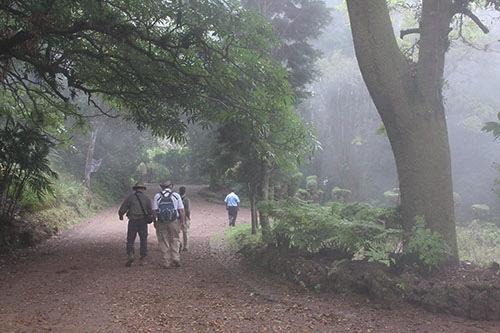 Thumbnail El Parque Nacional Cerro Verde