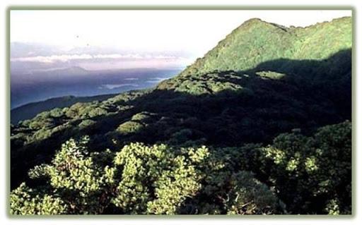 Thumbnail Parque Nacional Montecristo
