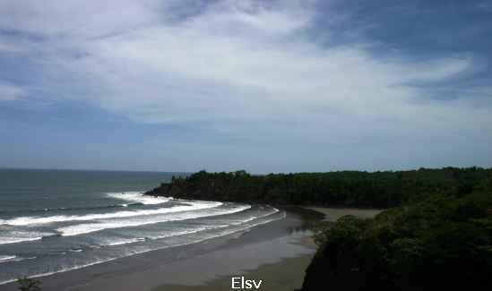 Imagen de Playa Las Flores 3