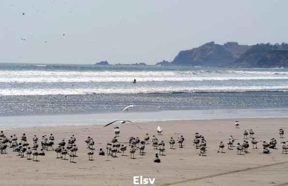 Playa Las tunas Imagen 2